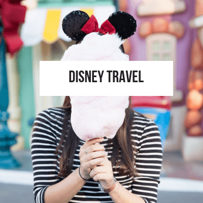 Disney Travel Category