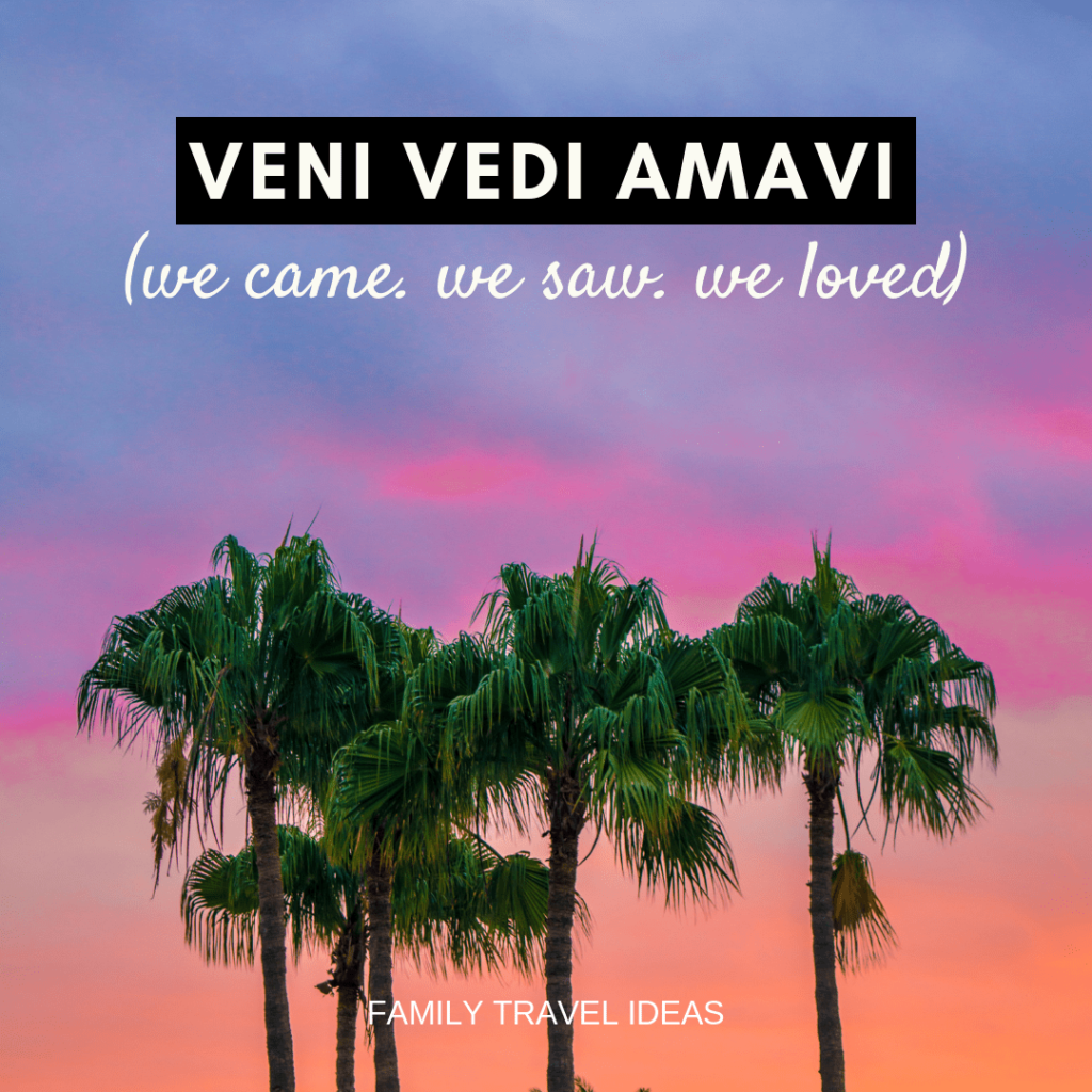 Veni Vedi Amavi | Travel quotes