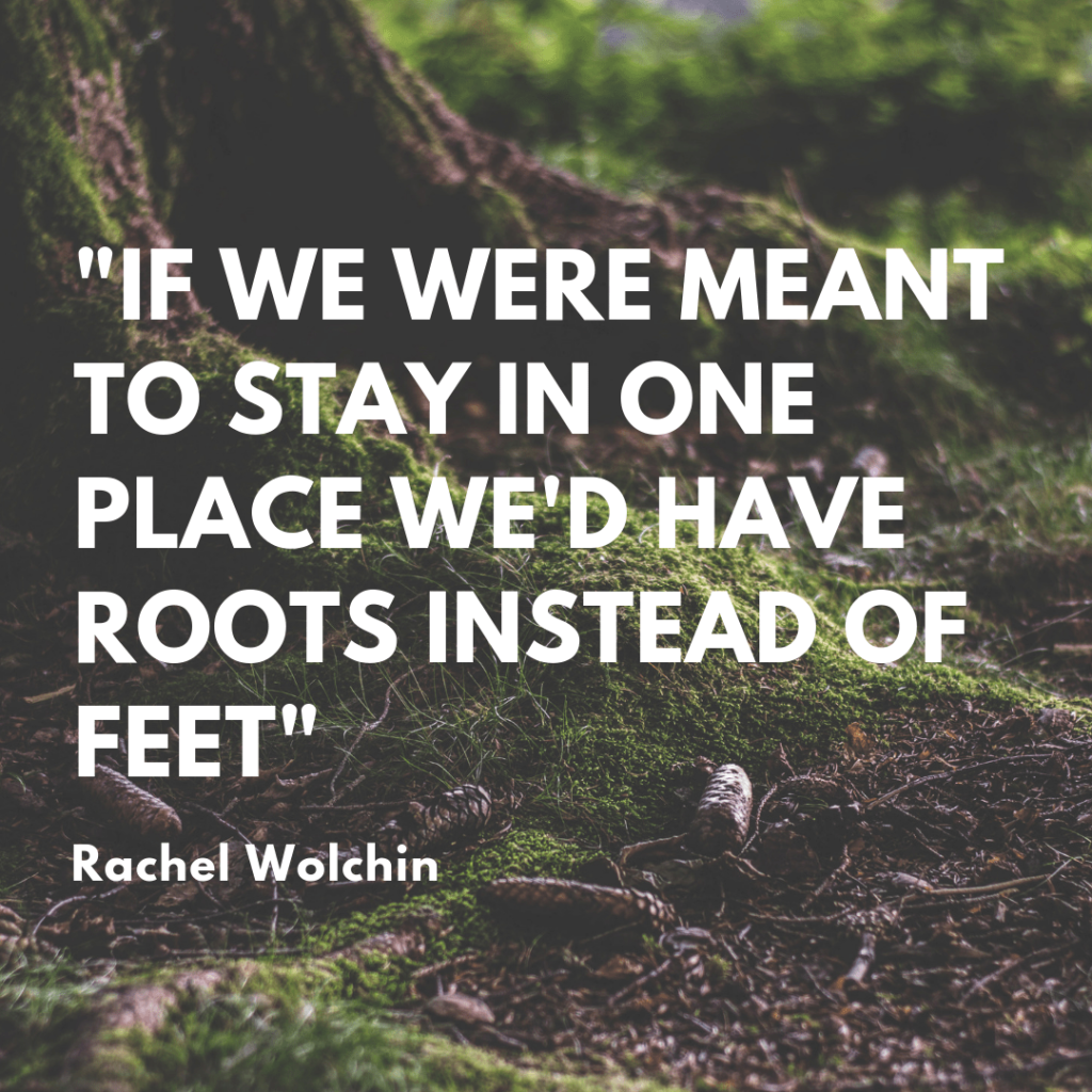 If we were meant to stay in one place we'd have roots instead of feet | Trip quotations